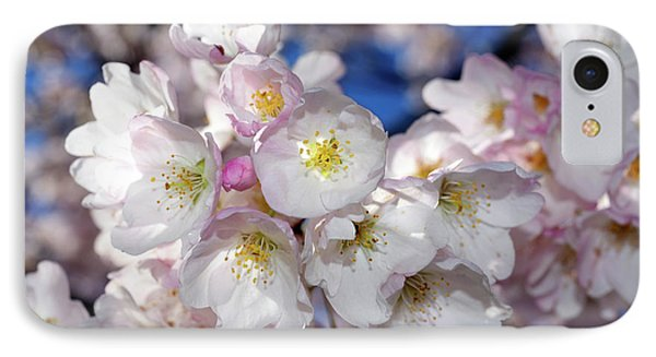 IPhone Case featuring the photograph Vancouver 2017 Spring Time Cherry Blossoms - 13 by Terry Elniski