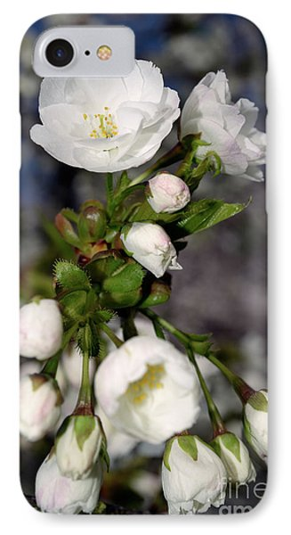 IPhone Case featuring the photograph Vancouver 2017 Spring Time Cherry Blossoms - 3 by Terry Elniski