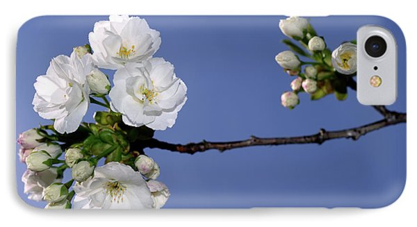 IPhone Case featuring the photograph Vancouver 2017 Spring Time Cherry Blossoms - 4 by Terry Elniski