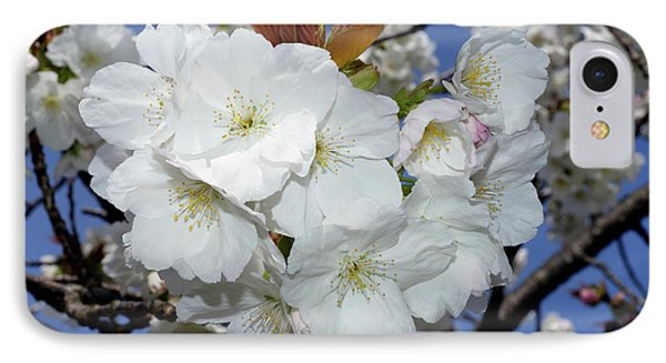 IPhone Case featuring the photograph Vancouver 2017 Spring Time Cherry Blossoms - 5 by Terry Elniski