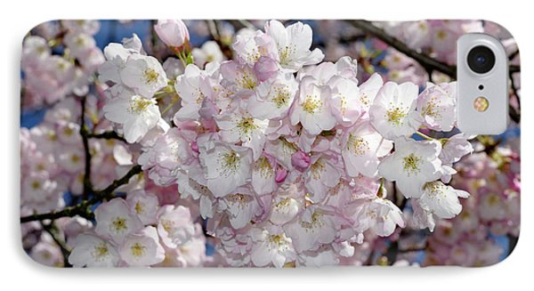 IPhone Case featuring the photograph Vancouver 2017 Spring Time Cherry Blossoms - 6 by Terry Elniski