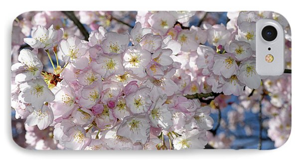 IPhone Case featuring the photograph Vancouver 2017 Spring Time Cherry Blossoms - 8 by Terry Elniski