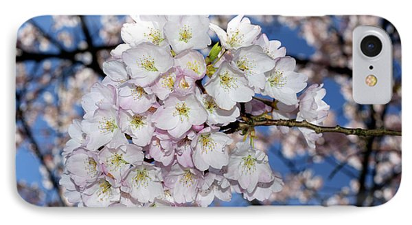 IPhone Case featuring the photograph Vancouver 2017 Spring Time Cherry Blossoms - 9 by Terry Elniski