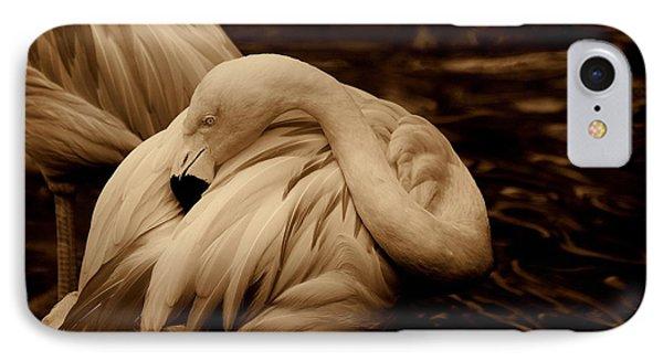 Vanity II Phone Case by Susanne Van Hulst