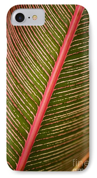 Variegated Ti-leaf 2 Phone Case by Ron Dahlquist - Printscapes