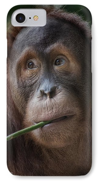 Vegetarian IPhone Case by CR  Courson