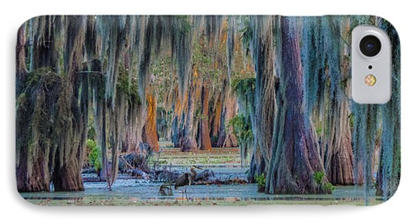 Unveiling The Secrets Of Da Swamp At Cypress Island Preserve IPhone Case by Kimo Fernandez