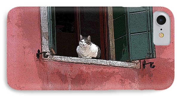 Venetian Cat In Window IPhone Case