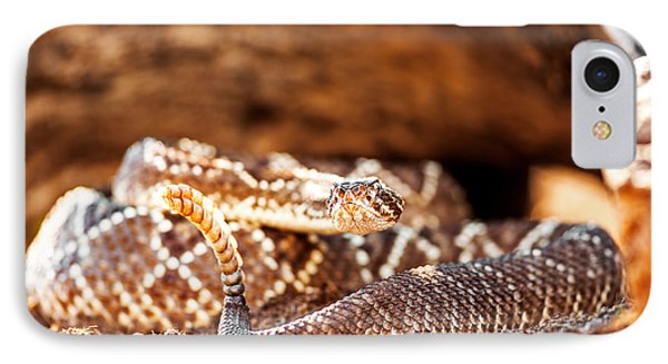 Venomous South American Rattlesnake By Rock IPhone Case by Susan Schmitz