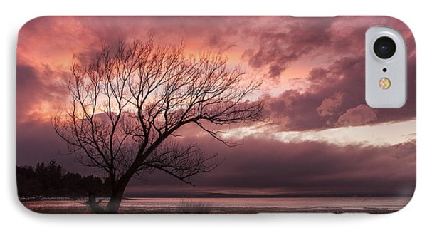 Vermont-sunset-silhouette-lake Champlain-tree IPhone Case by Andy Gimino