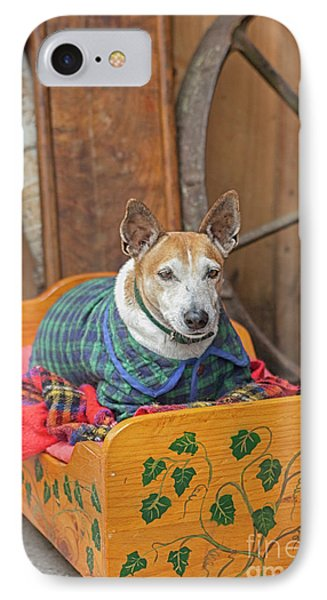 IPhone Case featuring the photograph Very Old Pet Dog In Clothes On Own Bed by Patricia Hofmeester