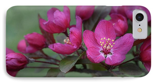 IPhone Case featuring the photograph Vibrant Blooms by Ann Bridges