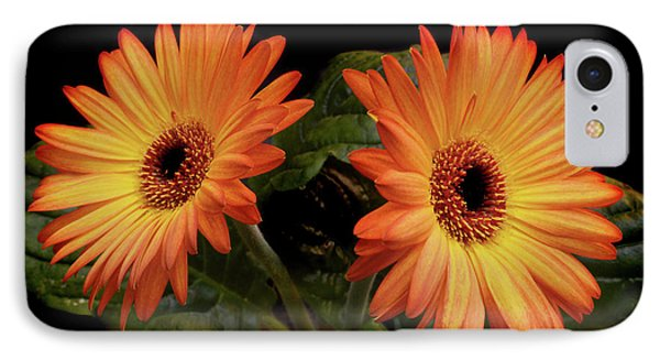 IPhone Case featuring the photograph Vibrant Gerbera Daisies by Terence Davis