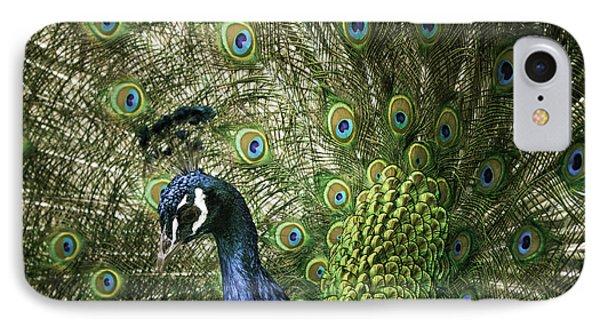 Vibrant Peacock IPhone Case by Jason Moynihan