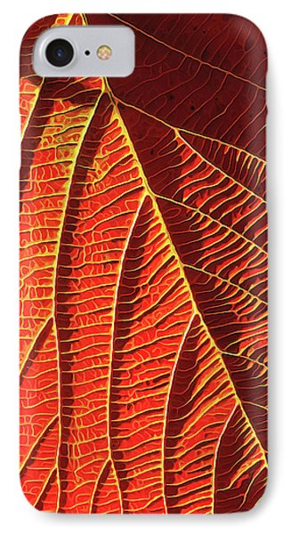 Vibrant Viburnum IPhone Case by ABeautifulSky Photography