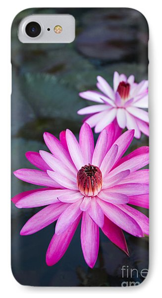 Vibrant Waterlilies Phone Case by Dana Edmunds - Printscapes