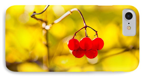 IPhone Case featuring the photograph Viburnum Berries - Natural Olympic Emblem by Alexander Senin