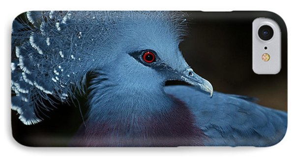 IPhone Case featuring the photograph Victorian Crowned Pigeon by JT Lewis