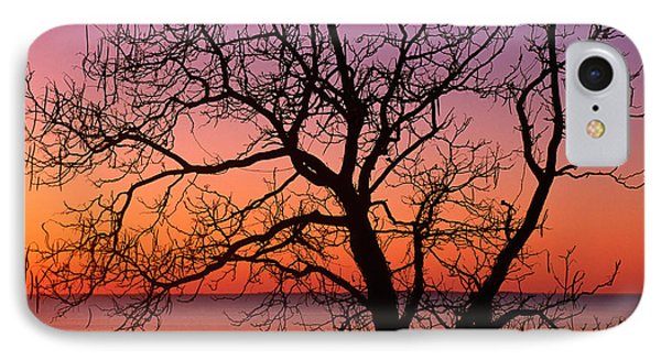 View Of Ocean Through Silhouetted Tree IPhone Case by Panoramic Images
