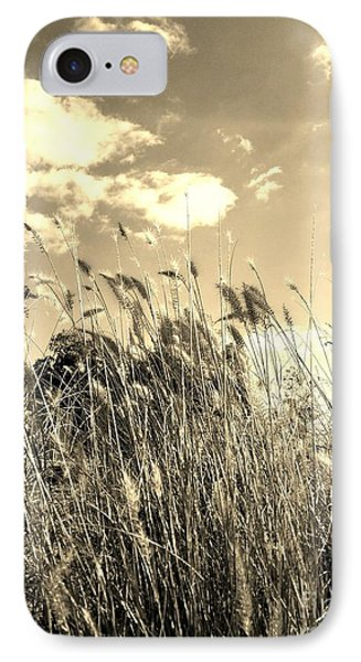 View Of The Field Mouse - Sepia IPhone Case