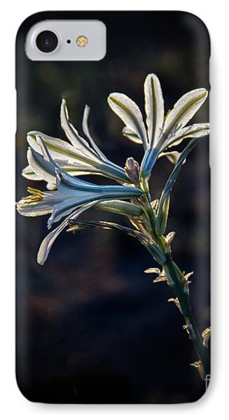 IPhone Case featuring the photograph Vignetted Ajo Lily by Robert Bales