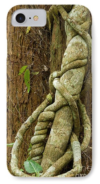 IPhone Case featuring the photograph Vine by Werner Padarin