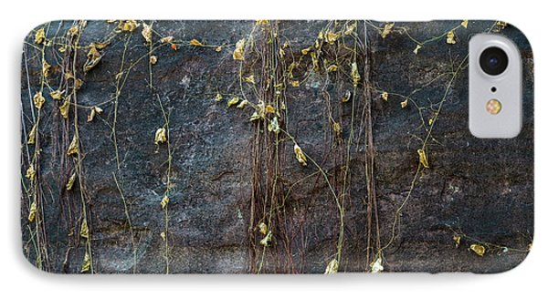 IPhone 7 Case featuring the photograph Vines On Rock, Bhimbetka, 2016 by Hitendra SINKAR