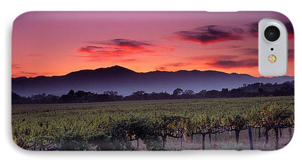 Vineyard At Sunset, Napa Valley IPhone Case by Panoramic Images