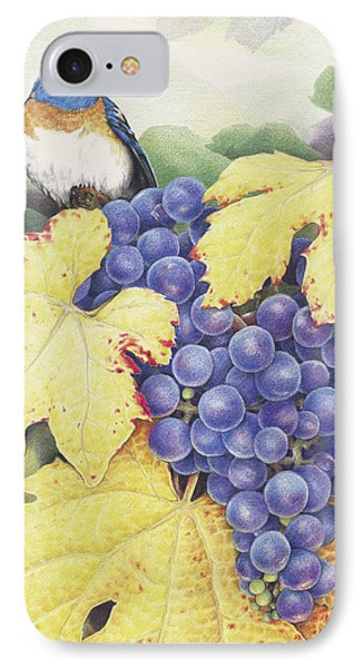 Vineyard Blue Phone Case by Amy S Turner