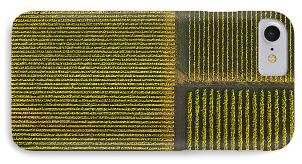 Vineyard From Above IPhone Case by Diane Diederich
