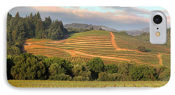 Vineyard In Dry Creek Valley, Sonoma County, California IPhone Case by Wernher Krutein