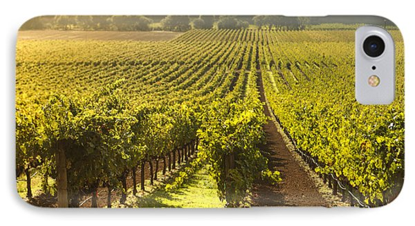 Vineyard In Napa Valley IPhone Case