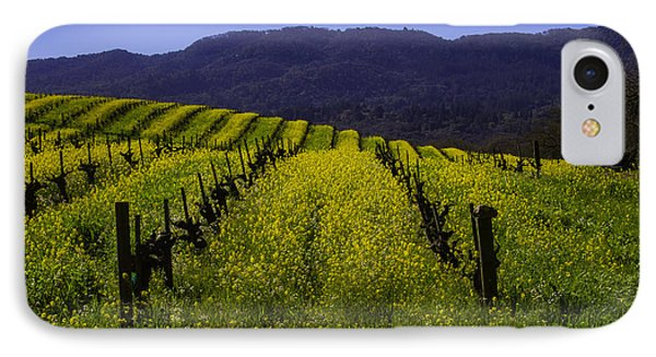 Vineyard Mustard IPhone Case by Garry Gay