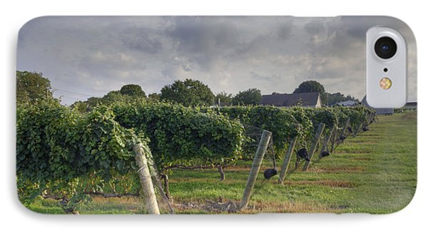 Vineyard With  Barn IPhone Case