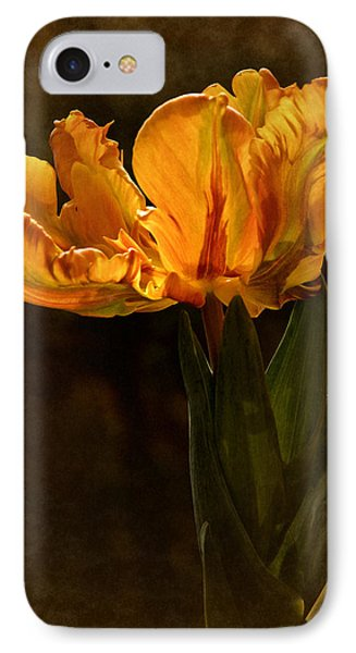 Vintage 2017 Tulip IPhone Case by Richard Cummings