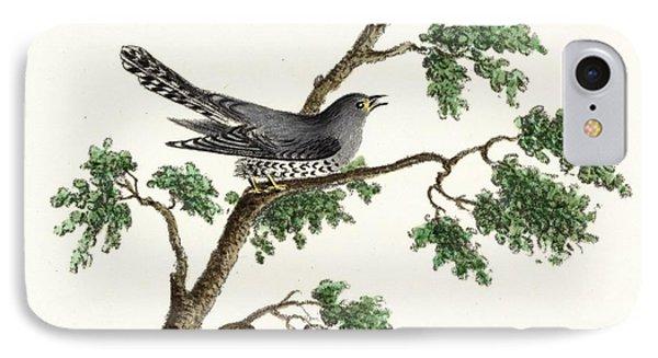 Vintage Black Bird On Tree Limb IPhone Case