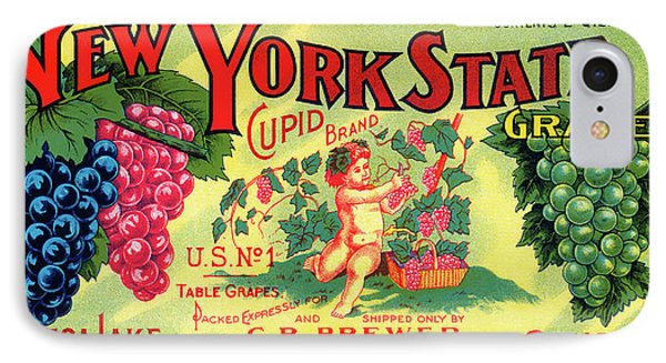 Vintage Concord Grape Packing Crate Label C. 1920 IPhone Case