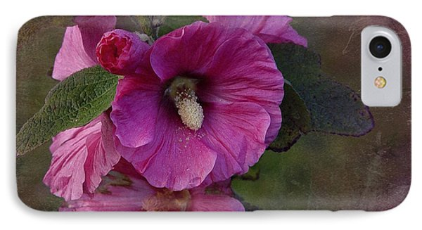 Vintage December Hollyhock IPhone Case by Richard Cummings