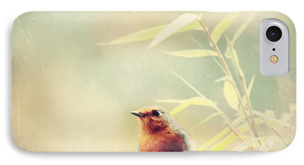 Vintage Robin 2 IPhone Case by Heike Hultsch