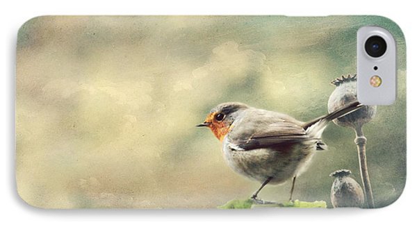 Vintage Robin IPhone Case by Heike Hultsch