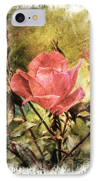 Vintage Rose IPhone Case by Tina  LeCour