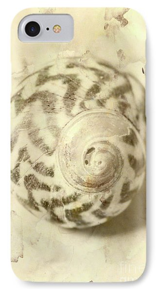Vintage Seashell Still Life IPhone Case by Jorgo Photography - Wall Art Gallery