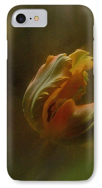Vintage Tulip March 2017 IPhone Case by Richard Cummings