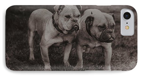 Vintage Two Bulldogs IPhone Case by Gillham Studios