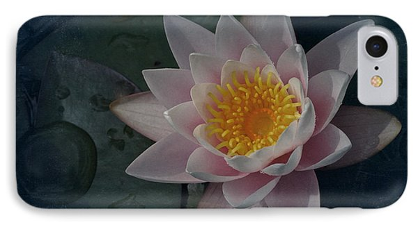 Vintage Water Lily IPhone Case by Richard Cummings