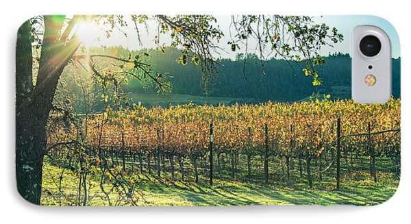 Vinyard Sunset IPhone Case