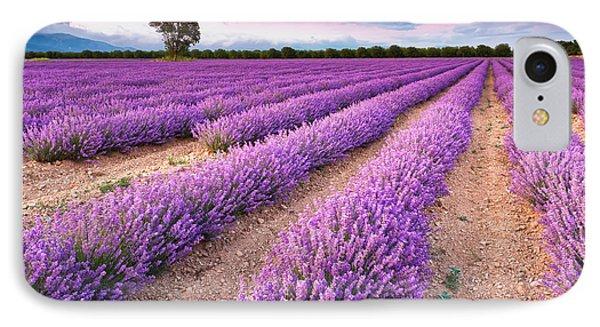 Violet Dreams IPhone 7 Case