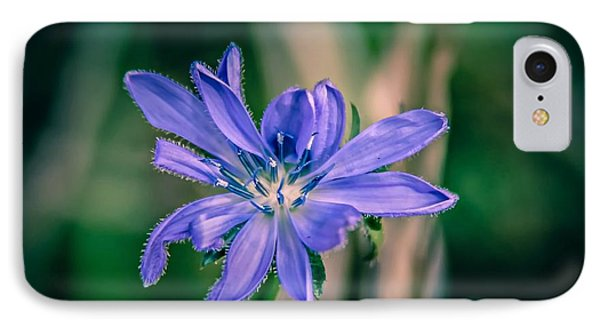 IPhone Case featuring the photograph Violet by Michaela Preston