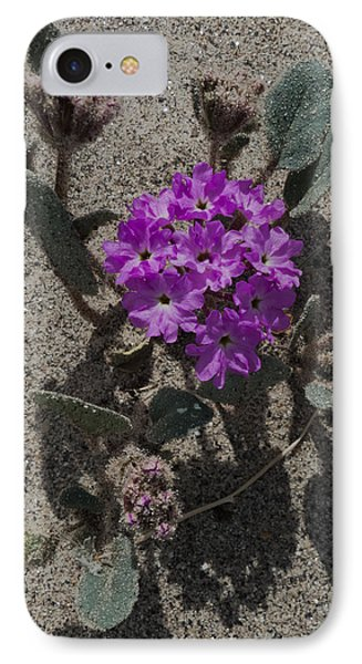 IPhone Case featuring the photograph Violets In The Sand by Jeremy McKay