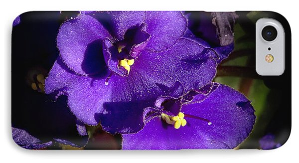 IPhone Case featuring the photograph Violets by Phyllis Denton